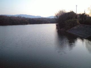 南大阪野池